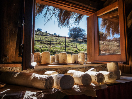 shepherd sheep: Photo of a typical Sicilian farmhouse cheese Stock Photo