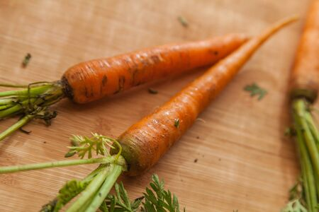 food photography: food photography carrots