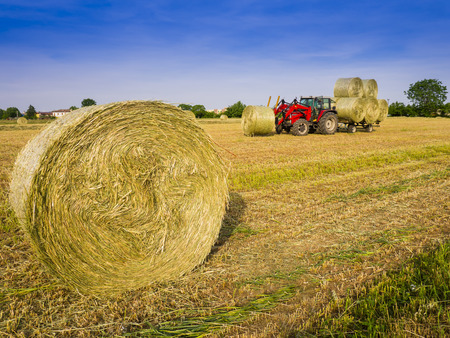 Tractor collecting hay bales in the fields Banco de Imagens
