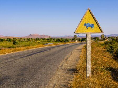 Madagascar, picturesque zebu warning road sign beside RN7 highway