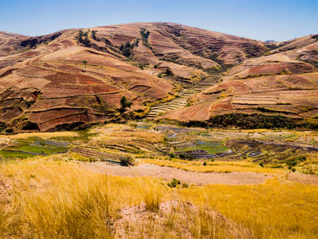 Colorful hills with terraced rice paddy fields in the highlands of Madagascar