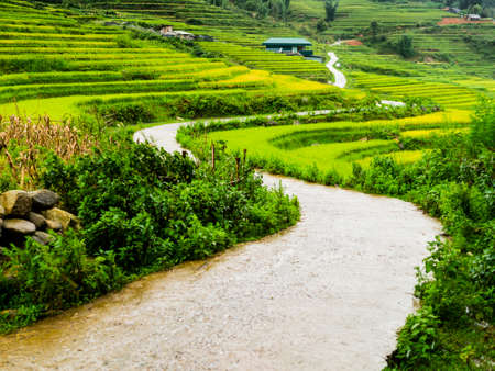 Gorgeous winding road through the terraced rice paddy fields of Sapa, northern Vietnam
