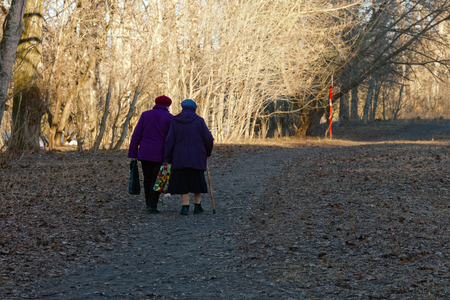 Two elderly women walk along the path in the park in early spring on a sunny day. Back view