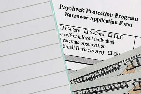 paycheck protection program. borrower application form.