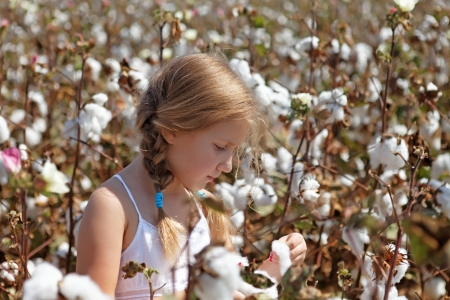 pretty Young girl walking in a field of cotton