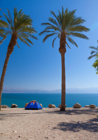 a romantic getaway on the beach under the palm trees, the perfect place