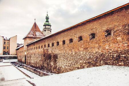 monastery: Bernardinsky monastery