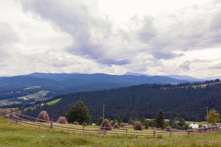 rural landscape, sheaves of hay in the Carpathians