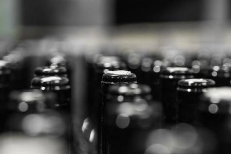conveyors: wine bottles on the conveyor, production of wine