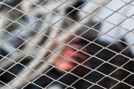 metal grid: the abstract background texture metal grid closeup Stock Photo