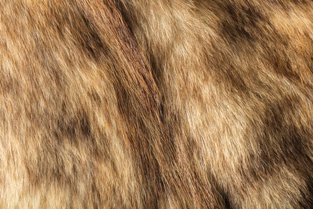 warm things: the abstract background texture of natural fur wolf Stock Photo