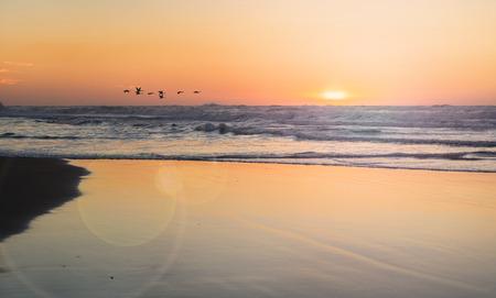 the landscape sea waves on sunset background