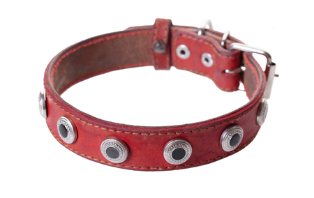 leather red dog collar on white isolated background