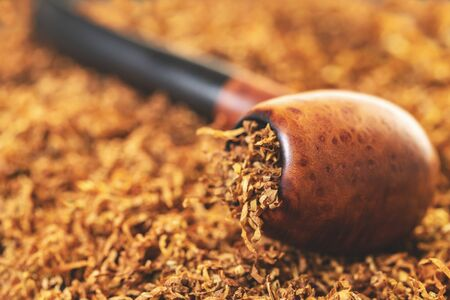 smoking pipe close-up on a background of dry tobacco