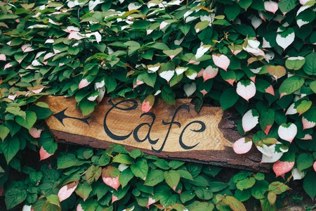 The inscription and the index is a cafe on the wood in green flowers. The arrow indicates the direction where to go if people want to eat. Stock Photo