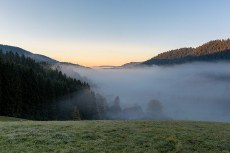 Autumn landscape - Black Forest. View of a lake in the Black Forest on a foggy morning.