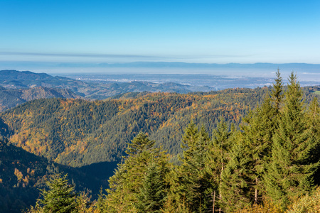 Autumn landscape - Black Forest. Panoramic view over the autumnal Black Forest, the Rhine valley and the Vosges (France) in the distance.