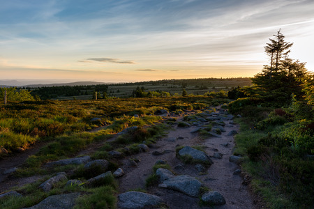 French countryside - Vosges. Sunrise in the Vosges with a hiking trail and rocks in the foreground. Rhine Valley and Black Forest in the background.