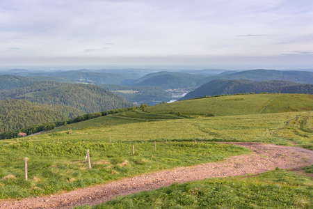 French countryside - Vosges. A cow pasture and road in the Vosges with a beautiful view of the countryside and a lake.