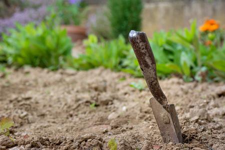 Gardening. A shovel in the garden after work. Stok Fotoğraf - 89191813