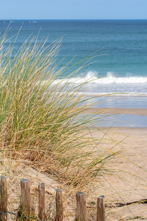 French landscape - Bretagne. View to the sea with dunes and grass in the foreground.