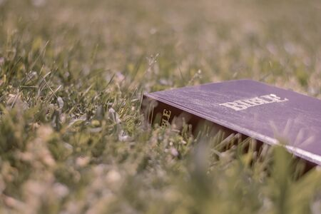 Christian worship and praise. The Holy Bible lying in the grass.