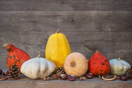 Holidays and season - autumn. Different beautiful colored pumpkins with wooden background. Zdjęcie Seryjne