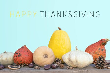 Holidays and season - autumn. Different beautiful colored pumpkins with pink background. Text: Happy Thanksgiving