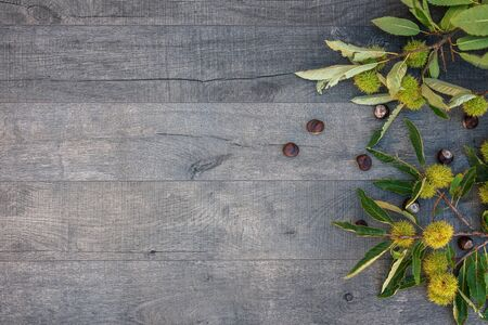 Holidays and season - autumn. Chestnuts and leaves on wooden background.