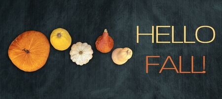 Holidays and season - autumn. Different beautiful colored pumpkins with dark background. Text: Hello Fall