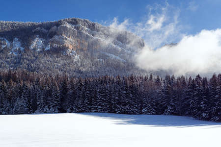 French winter landscapes. Panoramic view of mountain with snow covered firs. Vercors Regional Natural Park.