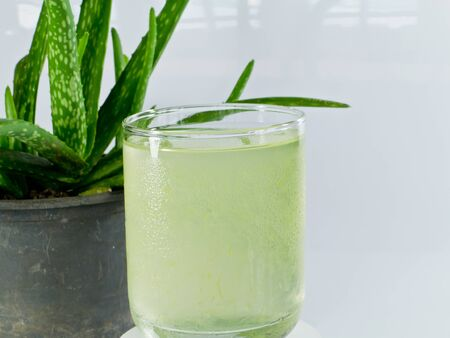 Aloe Drink and Aloevera Plant Stock Photo