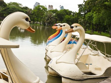 Watercycle boat in park photo