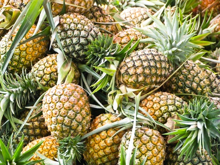 Pineapple, tropical fruit in Thailand Stock Photo - 10041529