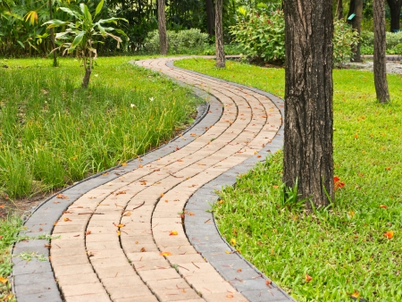 Curve of pathway in public park Stock Photo - 13915623