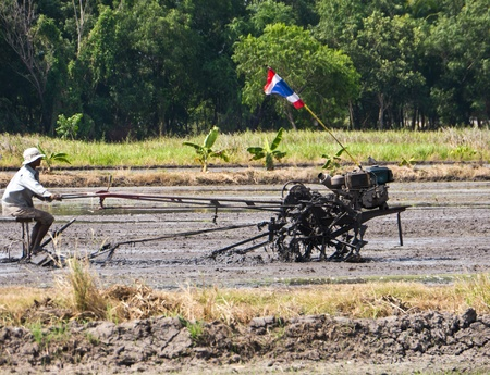 Ploughman ploughs the field in Thailand