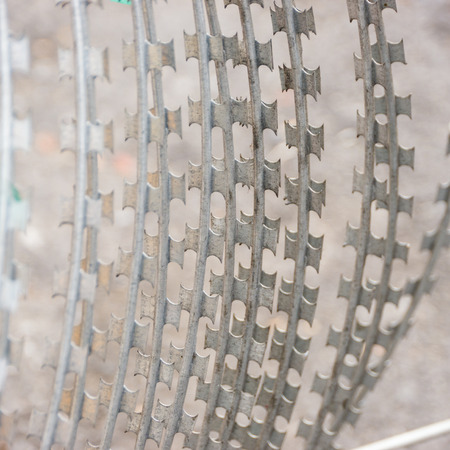 barbed wire fence: Barbed wire Stock Photo