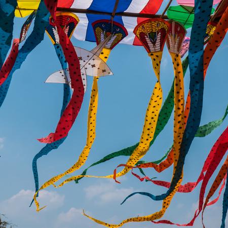 animal kite: Snake kites for sale