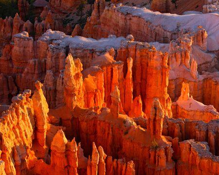 hoodoos: Bryce Canyon hoodoos