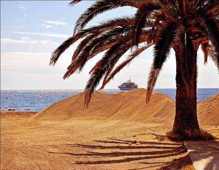 An idyllic southern europe beach scene including date palm sand ship and sky.