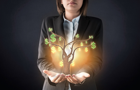 bringing home the bacon: Business woman and money tree