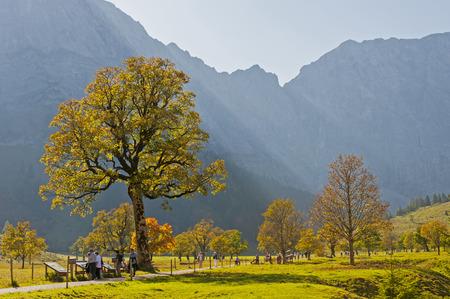 Goldene Herbsttage im Karwendelgebirge