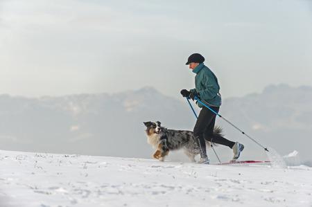 Frau und Hund Skilanglauf in den bayerischen Bergen Standard-Bild - 47310106