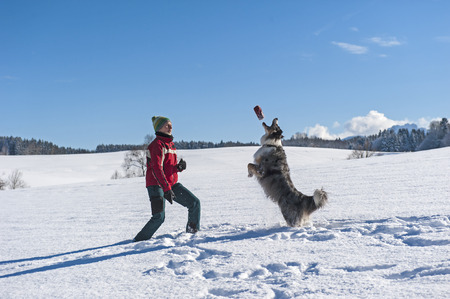 Spaß und aktiv zu Fuß mit einem Hund im Schnee Standard-Bild - 47310117