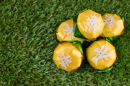 Coin folding with Ribbon is shaped Toddy palm cake (Khanom tan) On green grass for ordination ceremony of buddhism  Khanom Tan is a popular Thai dessert. Stock Photo