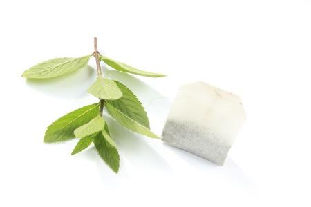 teepflanze: Pfefferminztee, Pflanze mit Teebeuteln