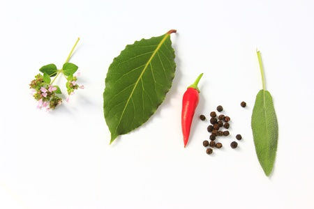 welfare plant: fresh picked garden herbs before white background Stock Photo