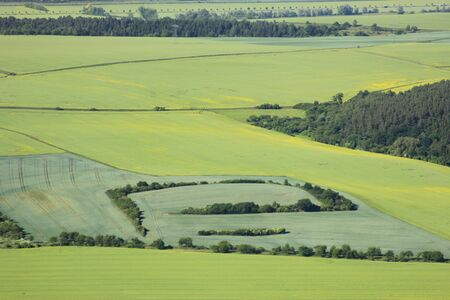 arable land: aerial view of arable land