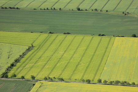 Aerial view of flowering arable land and rapeseed fields photo