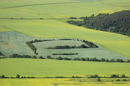 arable land: Aerial view of flowering part of arable land and rapeseed fields Stock Photo